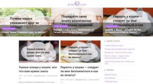 Здоровье кошек, Блог о кошках, Кошачий блог, Корм для кошек