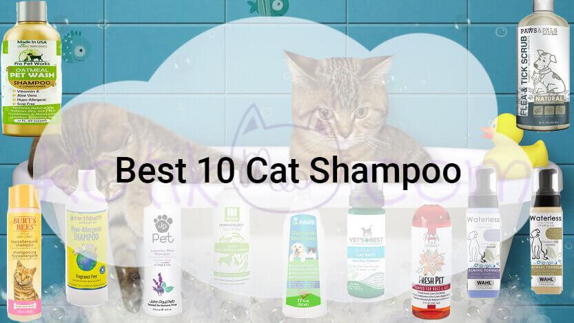 Best 10 Cat Shampoo