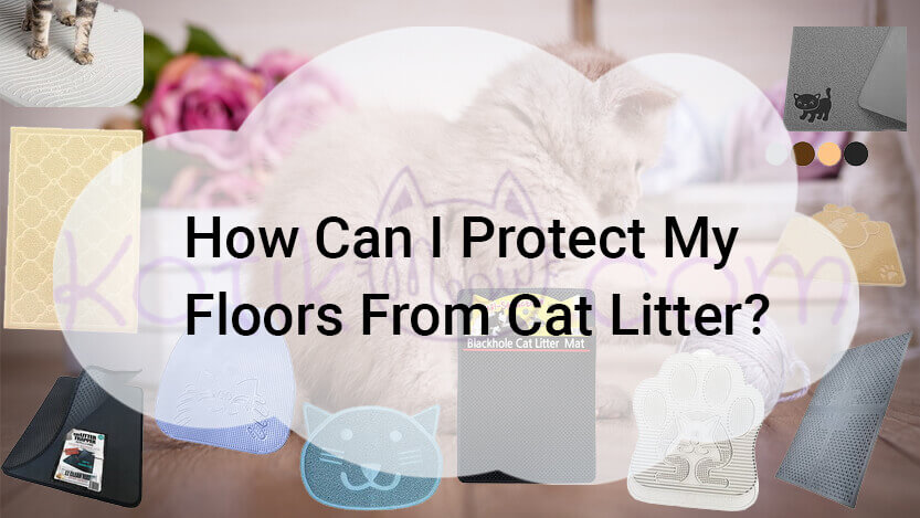 How Can I Protect My Floors From Cat Litter