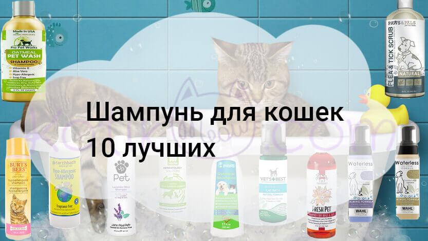 Шампунь для кошек 10 лучших
