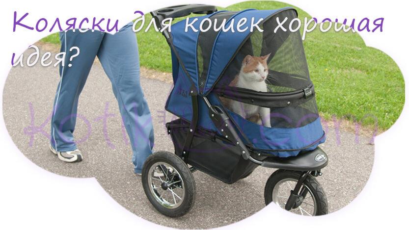 Прогулочные коляски для животных