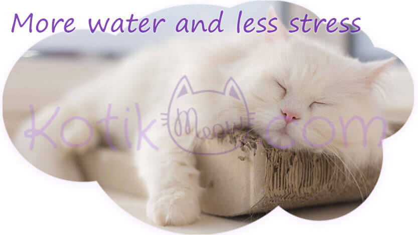 More water and less stress